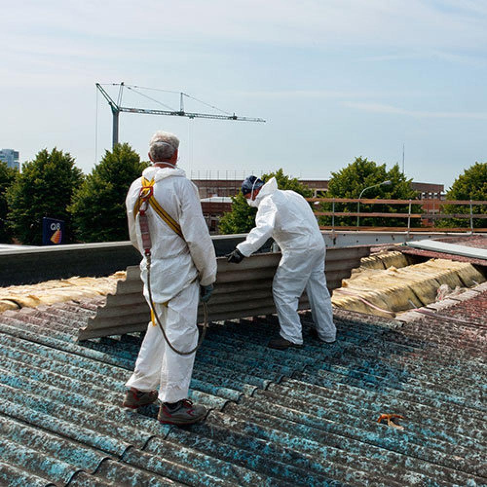 asbestos removal insurance